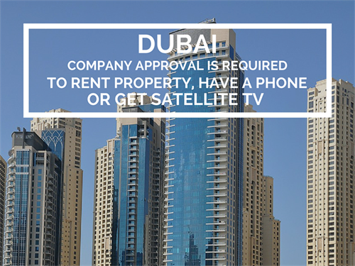 Dubai Office Culture Company Approval Is Required