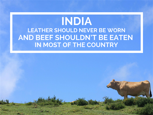 India Office Culture No Leather Or Beef